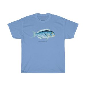 Cool-Blue-Fish-T-Shirt-gift
