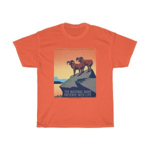 Positive-tshirt-gifts-for-her-women-men-dad-mom-him-funny-sayings- men-quotes-vintage-national-parks-see-america-orange