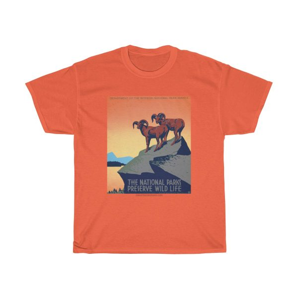 cool-funky-vintage-national-park-promo-poster-T-Shirt-gift